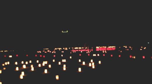 なら燈花会2008