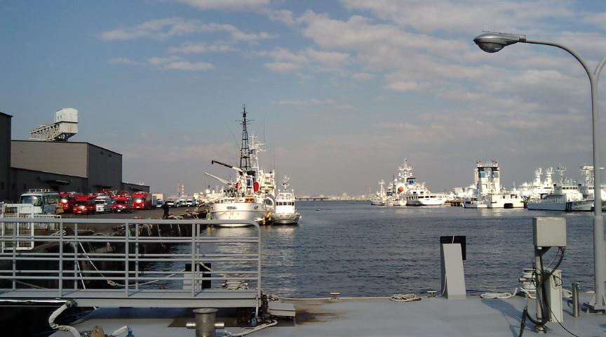 巡視艇がいっぱい